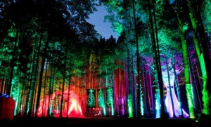 TheElectricForestMusicFestival_Rothbury_Michigan1