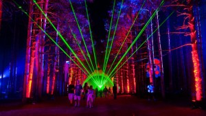 TheElectricForestMusicFestival_Rothbury_Michigan2