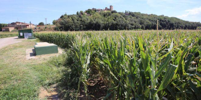 Una filtración de herbicidas deja a 12.000 vecinos sin agua potable en La Bisbal