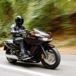 motoshjorribles-11-Honda-DN