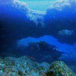 fondos-marinos-11122016dsc09612